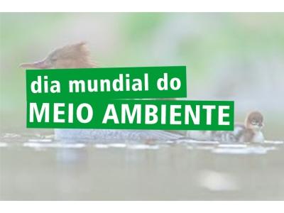 Dia do meio ambiente